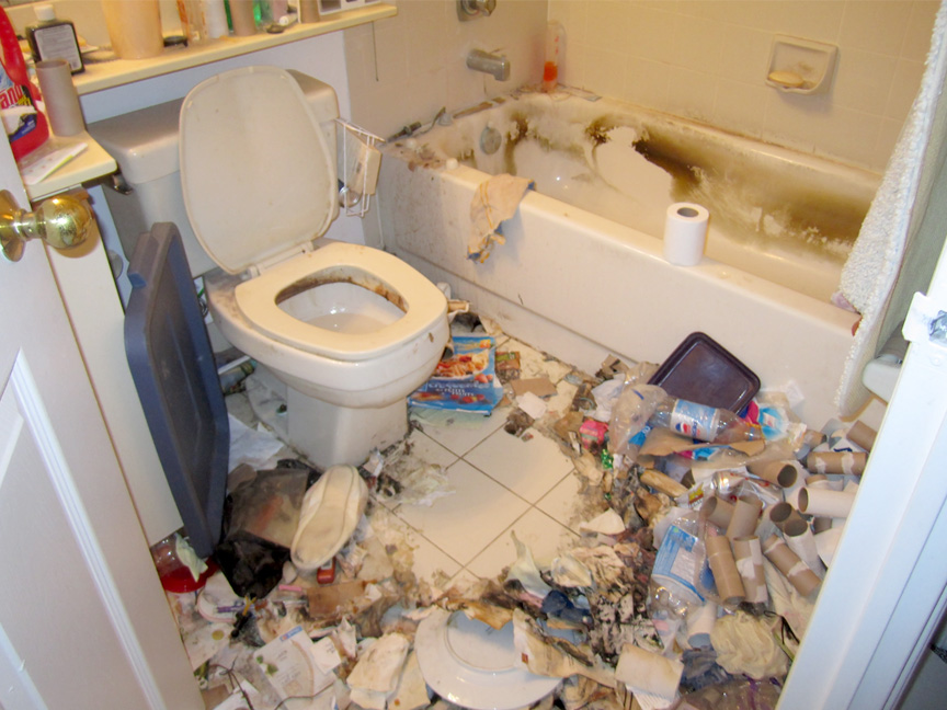 Extreme Cleaning: Bathroom